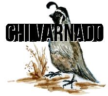 Chi Varnado